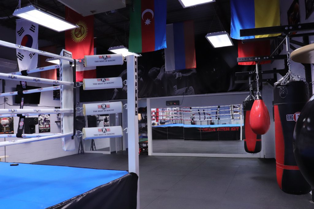 Ring, punching bags, and mirror